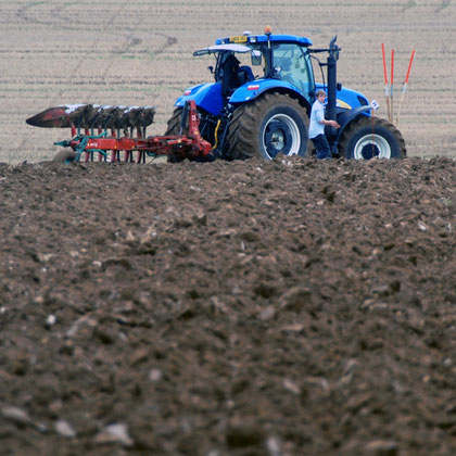 Limited rotations and petrochemical inputs depleting the soil? (East Kent Ploughing Match 2010)