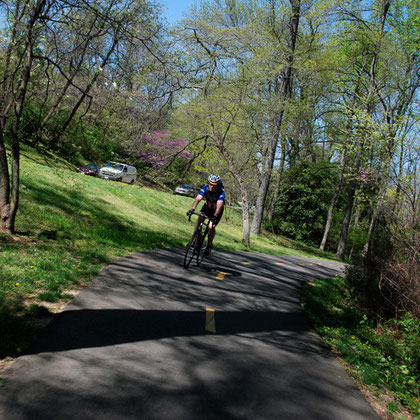 'On your left': cyclist on the Mount Vernon Trail