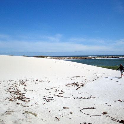 Blown sand near Olifantbos Bay (c) Peg Murray Evans