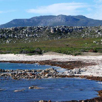 Olifantbos Bay