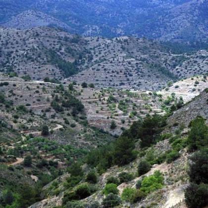 Dry hills, Fikardou