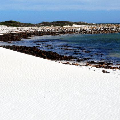 Sand and cast kelp near Olifantbos