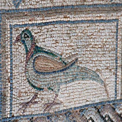 Pigeon, 5th century Roman mosaic, House of Eustolis, Kourion