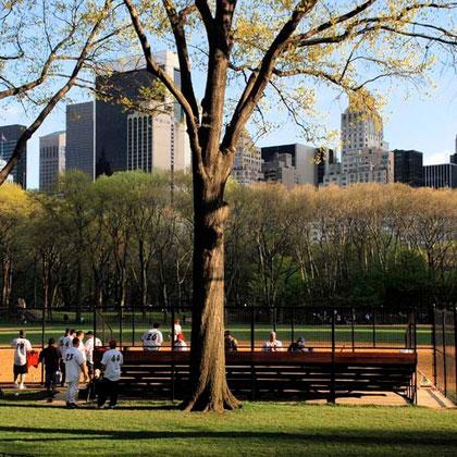 Baseball, Central Park