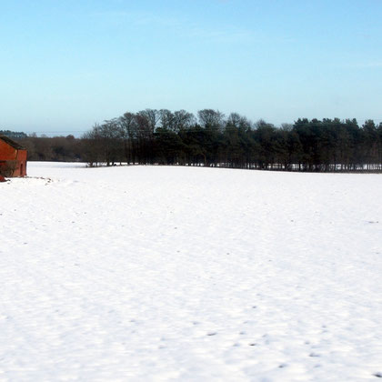 Red brick barn, white field, Northumberland