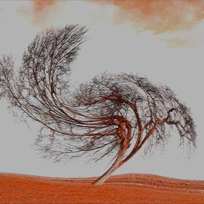 Rita Greve - Bewegung (Baum 1b)
