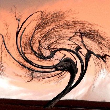 Rita Greve - Bewegung (Baum 1i)