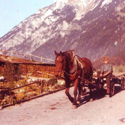 Samuel Jenny-Ganahl, Trogsite, mit seinem Pferd