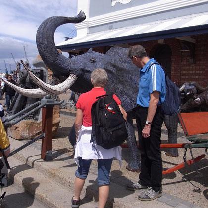 Renate und Hardy bewundern den Drahtelefanten
