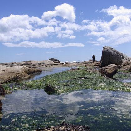Sea Point Steinlandschaft