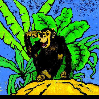 »Schimpanse« Akkaba Kinderbuch-Verlag
