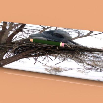 Cours du 07 janvier 2012: Création du crayon et intégration d'une image dans le projet.
