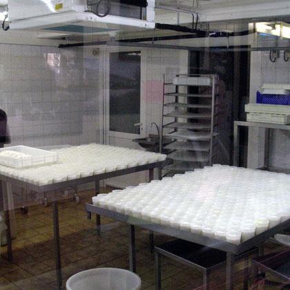 Bild: in der Ziegen-Käserei