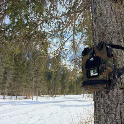 Action cam bag GIPFLbag Kameratasche Fototasche Rucksack bagpack tree baum montage wandern wildbeobachtung