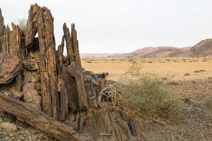 Matthias Gößmann: Naukluft Nationalpark; Namibia IM2_2933