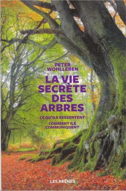Pour qui aime la nature, la forêt, une lecture enrichissante, des informations insoupçonnées ! Forêt d'Oloron dans les Pyrénées à protéger
