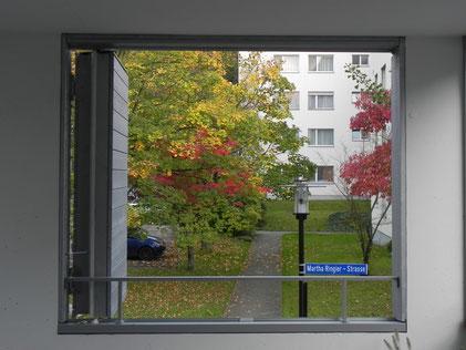 Sicht vom wia-Haus auf die Martha Ringier-Strasse