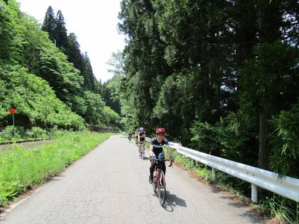 こういう道を走っていると、本当にサイクリングっていいわ~と思える(*´▽`*)