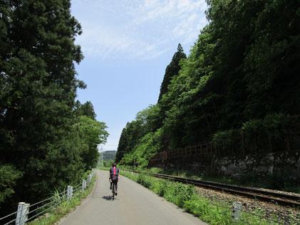 ドキドキのトンネルの後は、線路沿いの新緑の中を走る癒し道(*´▽`*)