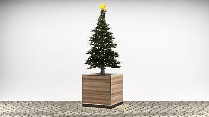 Cube mit komplett geschlossener Verkleidung und eingepflanztem Baum für Veranstaltungen jeglicher Art, wie Frühlings- oder Herbstfest