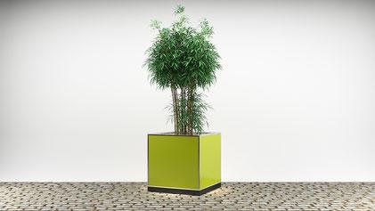 Cube mit dunkler Holzverkleidung & beleuchtetem Weihnachtsbaum für Weihnachtsmärkte oder Winterveranstaltungen