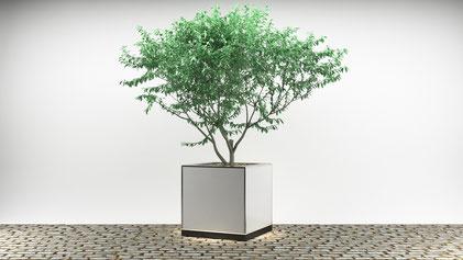 Cube mit Verkleidung aus hochwertiger Fassadenplatte (HPL) in weißer Optik und Edelstahl V4A Pflanzchale für Veranstaltungen jeglicher Art.
