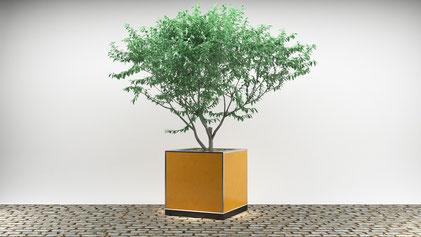 Cube mit Verkleidung in Rostoptik & extravagantem Baum für Events mit besonderer Ausstrahlung, wie Staatsempfänge oder Stars auf rotem Teppich