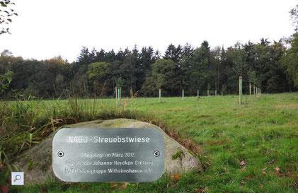 Die neue Streuobstwiese  -  Fotos:   A. Bürgener/ M. Schirrmacher