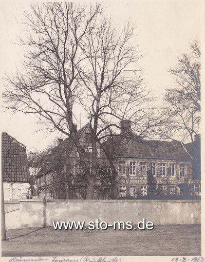 Krummer Timpen - Rückseite