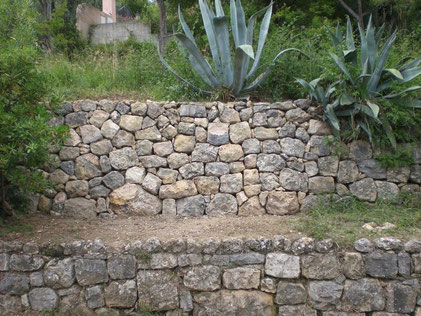 muret-mur-pierre-seche-restanque-restanques-restauration-reparation-var-83