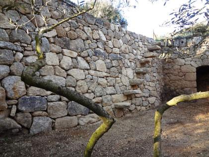 restanque-escalier-restauration-mur-pierre-seche-var-83
