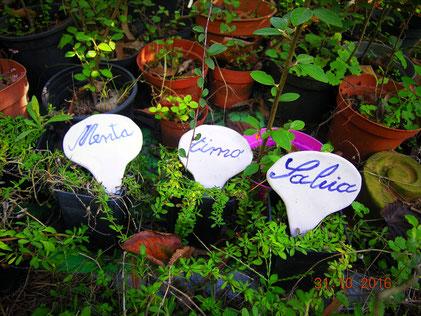 Queste 3 etichette in ceramica per piante aromatiche, sono una fantastica idea regalo