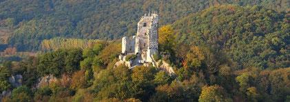 Drachenfelds / Siebengebirge (Quelle: Wikipedia)
