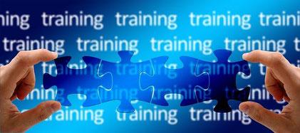 Bausteine der Trainingsplanung