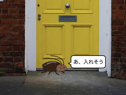 玄関の隙間から入ろうとするゴキブリ