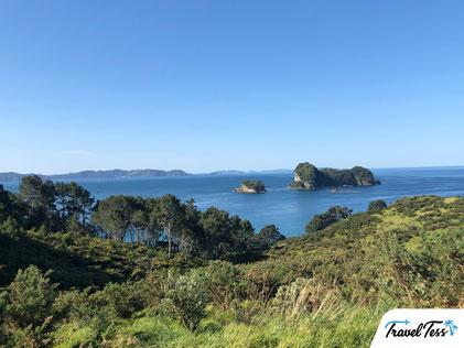Groene eilandjes in de Bay of Plenty
