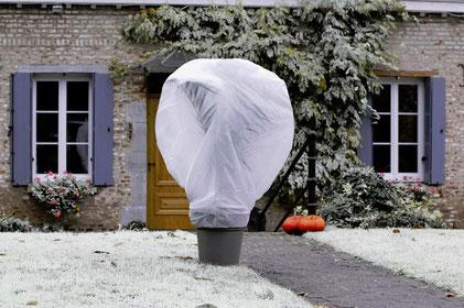 ©Nortene, Wintertex le voile d'hivernage en polypropylène 30g/m²