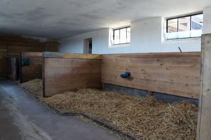 2013: Erste Umbauten und Erfahrungen mit dem Konzept des Laufstalls.