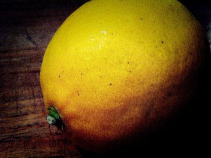 ぷっくり大き目なレモンを頂いた。 お父さんが家庭菜園しているらしいです。