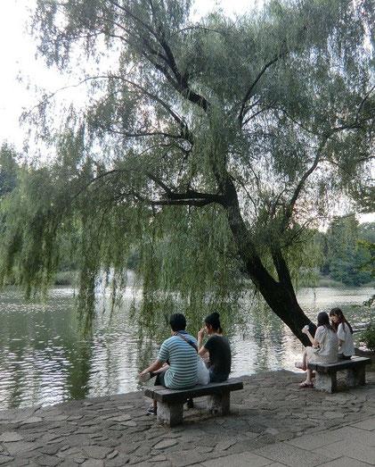 9月14日(2013)水辺の情景(井の頭池):水辺で憩う人たち
