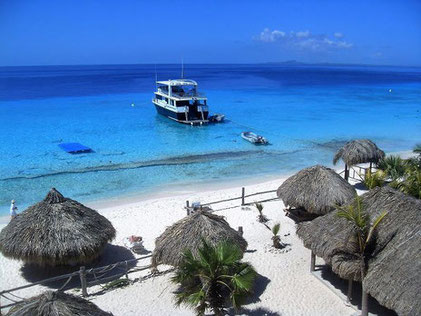 klein-curacao-urlaub-villa-ferienhaus-pool-karibik