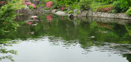 5月 目白庭園