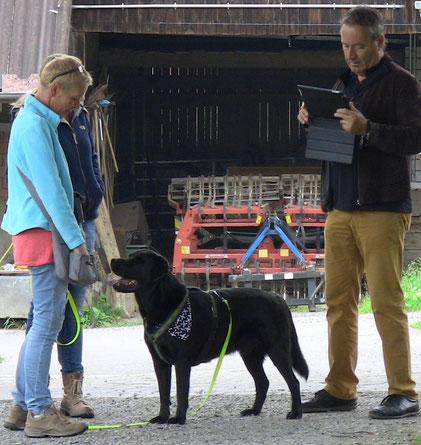Wie verhält sich der Hund und warum? Die Verhaltensbiologie betreibt hier Ursachenforschung auf verschiedenen Ebenen.