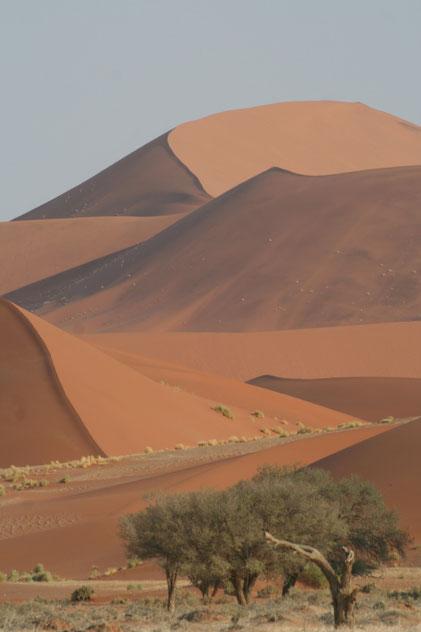 Namibie, Dune de Sossusvlei