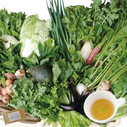 お野菜のうまみたっぷり「お野菜ブイヨンスープ」