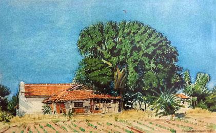 "Watercolour by W. Donkin ; "" Jhopdi """