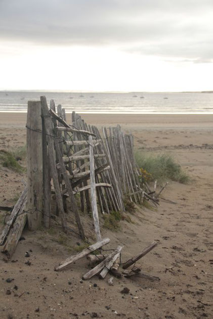 ©Claudia Dorka, verfallener Staketenzaun, Düne, Strand, Mullaghmore