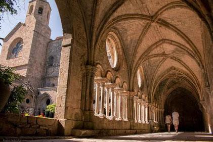 Abbaye de Fontfroide, Fête des plantes et du massif 2020
