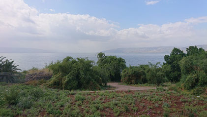 The Sea of Galilee view from the South