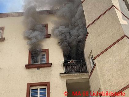 Feuerwehr, Blaulicht, Wien, Brand, Leopoldstadt